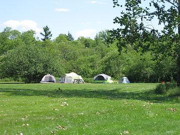 tenting in Renfrew Camping's Back Field