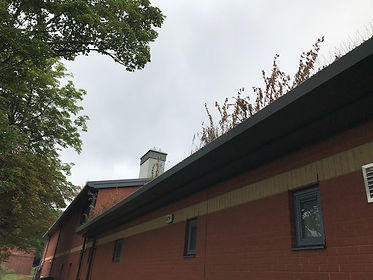 Gutter Cleaning Before Cleaned