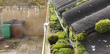 Gutter-Cleaning 10.png