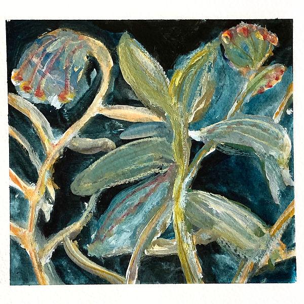 plant-180402.jpg