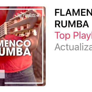 """""""Roneo"""" de BANDOLEROS en FLAMENCO Y RUMBA"""
