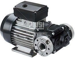 Piusi 220v E80 E120 Diesel Pump.jpg