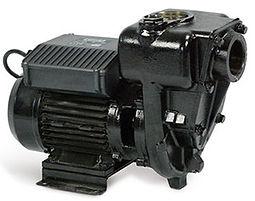 Piusi E300 pump.jpg