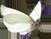 CW-butterfly1©Confetti