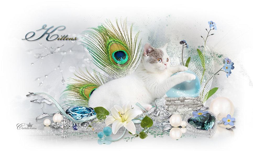 Gems-kittens.jpg