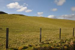 Land at Ty Nant, Corwen Advert Photo