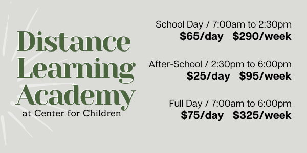 Distance Learning Academy.png