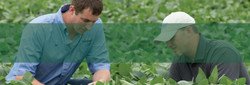 3-FarmVision-Services