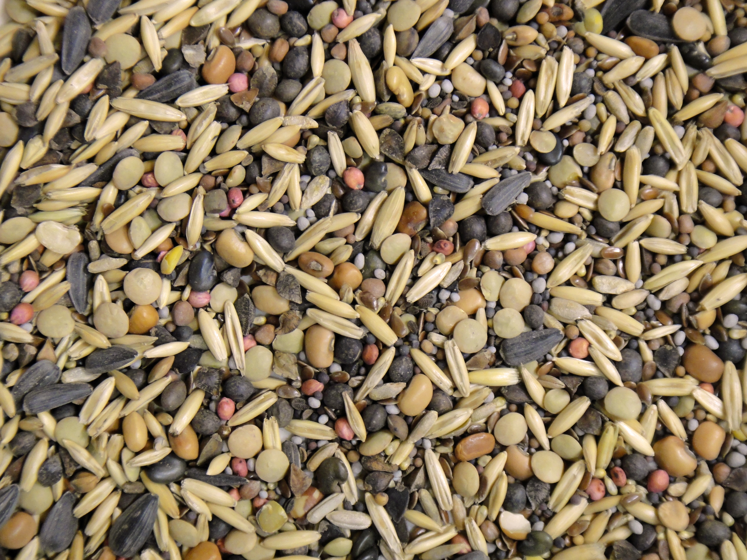 MixedSeeds_FarmVision