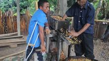 Servisu Hamatuk: Oinsá atu ajuda Ema ho Defisiénsia Hetan Suseu iha Negósiu