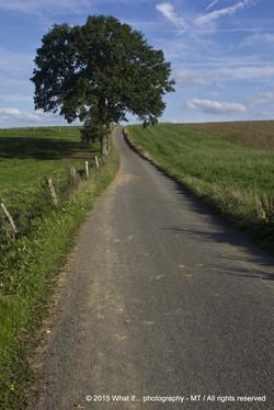 Village road in Ardennes