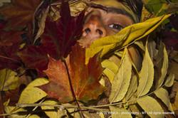 Hidden behind the leafs