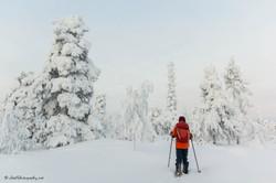 Crossing Lapland