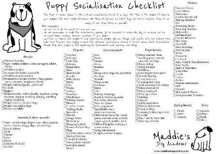 puppy-socialisation-checklist_—_kopia.