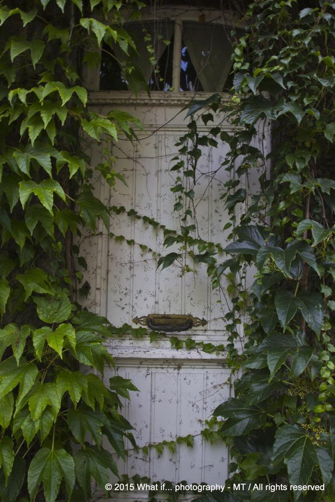 The ivy door (Durbuy)
