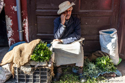 Moroccan Mint Seller