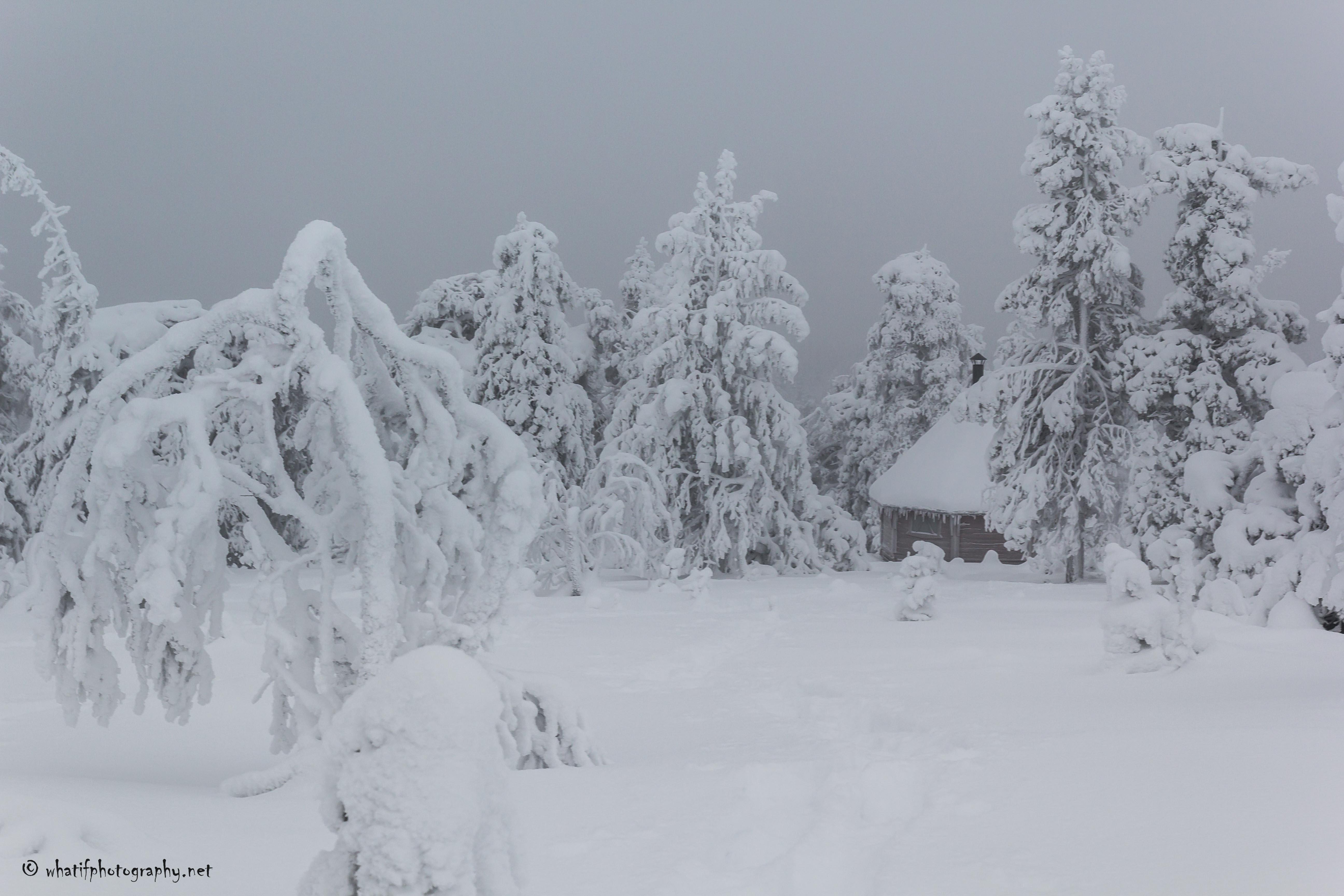 Chalet hidden in the snow