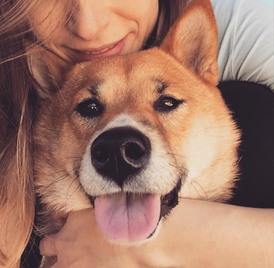 """""""Magda is a great and responsible person. My Dog totally loves her and I was able to feel really relax on my vacations, knowing that Mia was with Magda. She took care of Mia as if it was her own dog.  Absolutely recommend!!!"""" Cristiana S."""