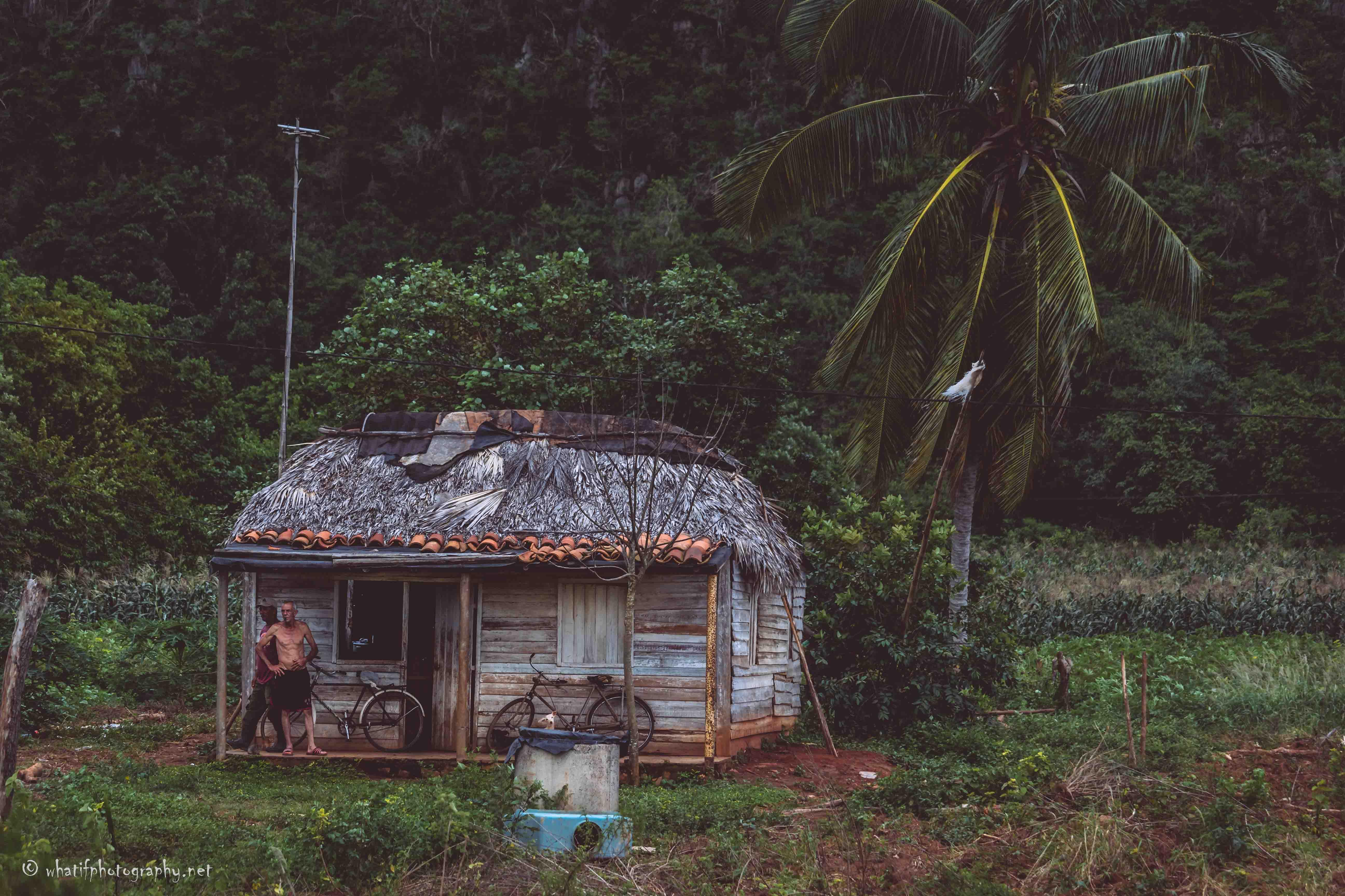Cuban Farm Home