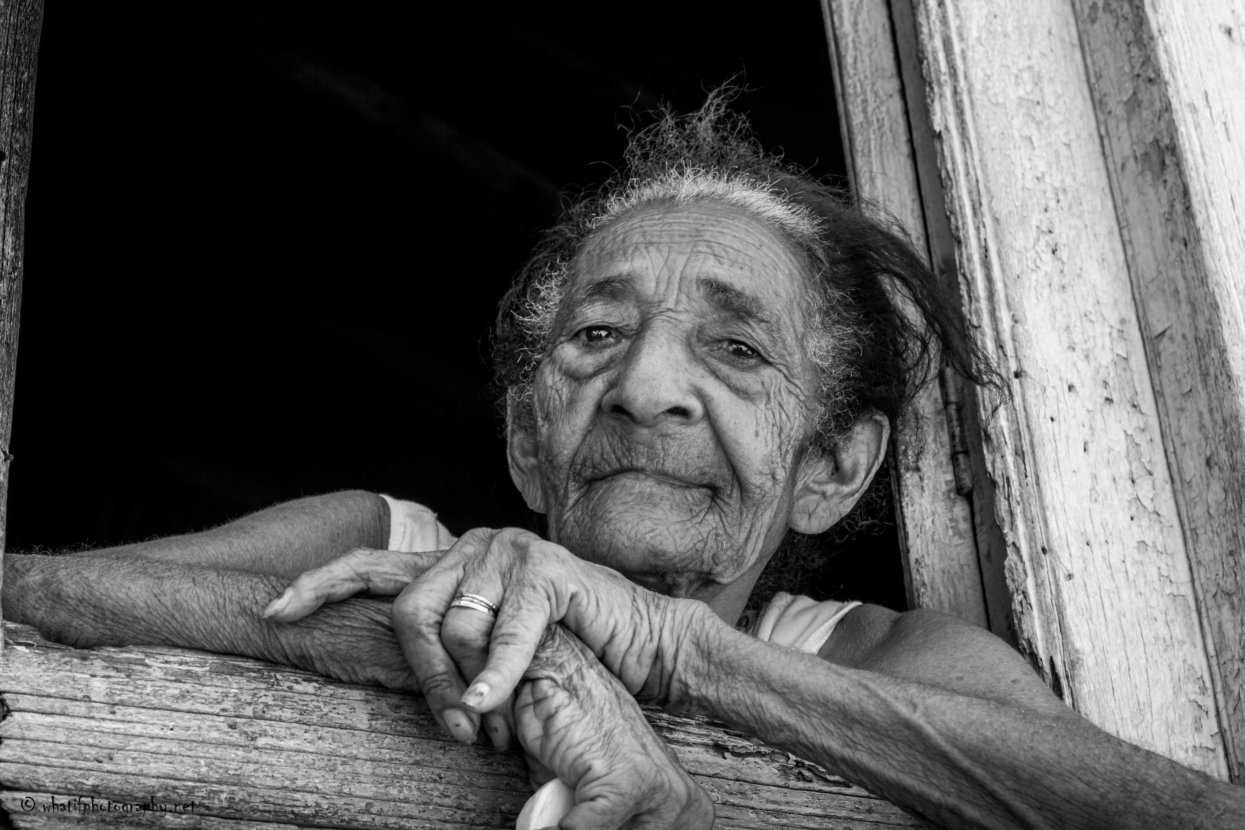 Wisdom in the window frame