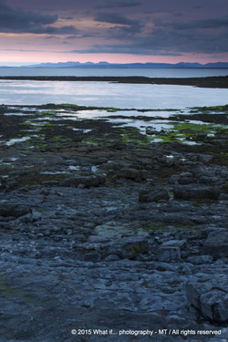 Seal colony reservat at Inishmore, Aran Islands (Ireland)