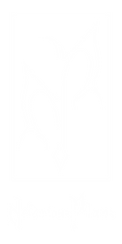 Np_Logo_White.png