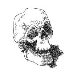 Quick Skull Drawing