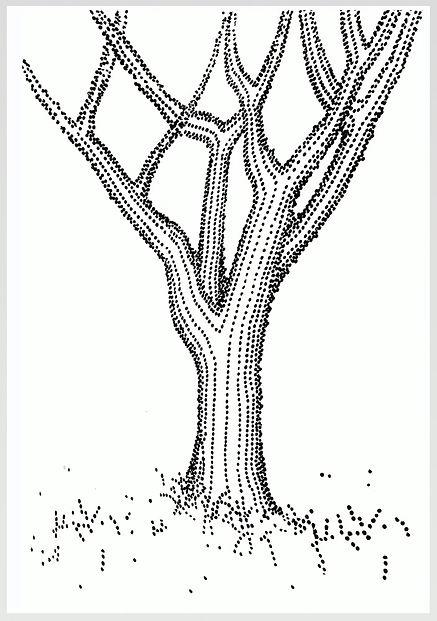 SARD_The-Tree_Edition-of-20_60-x-40-cm_f