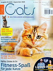 20200826_OurCats_Cover.jpg