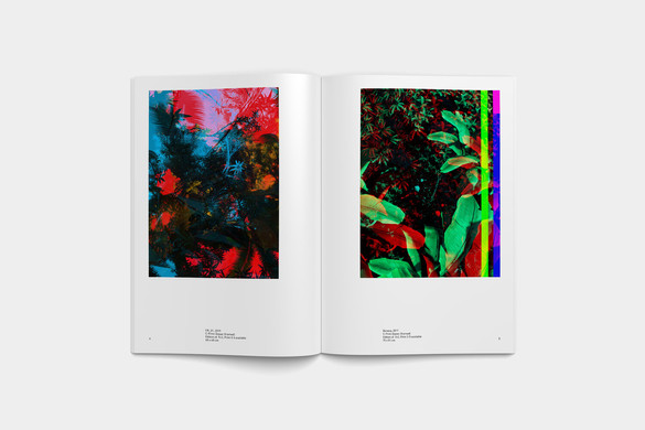 blank-art-booklet-raphael-brunk-1.jpg