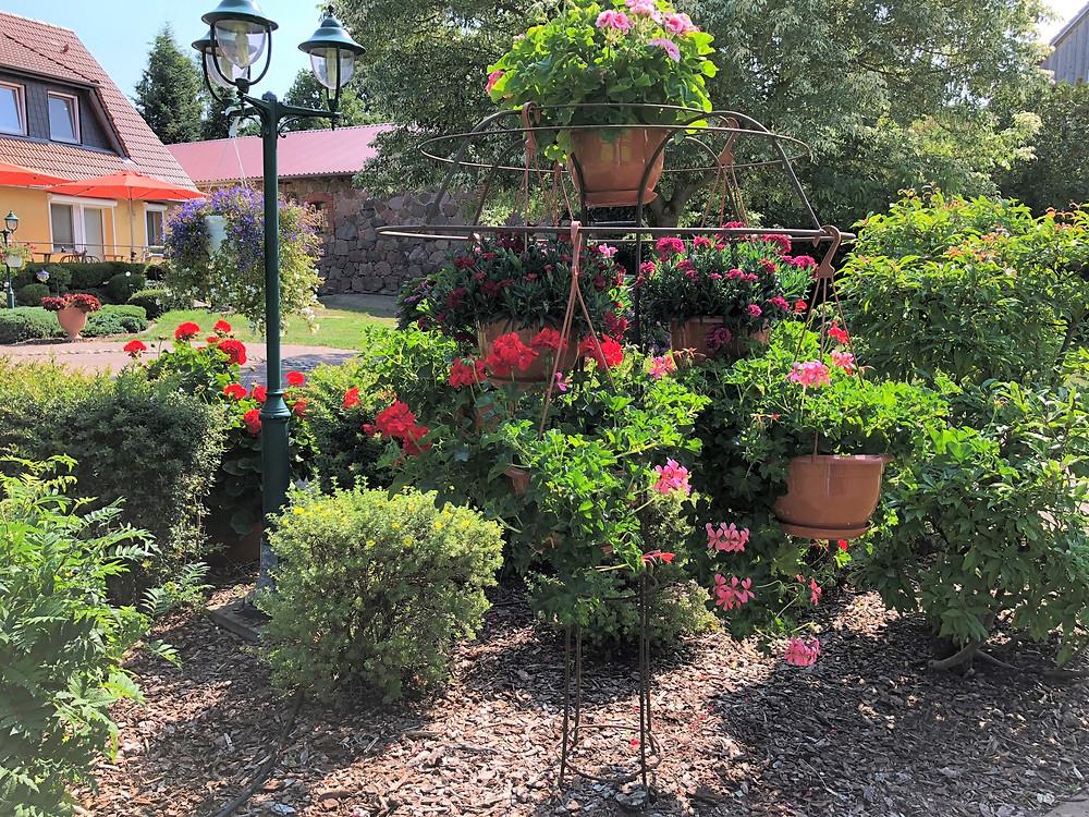Blumenampeln-MartinsHof-Kümmernitztal