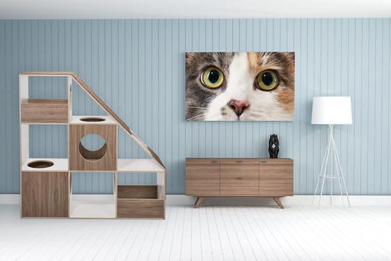 pawsonwood Katzenkratzmöbel | L – Der Katzentraum |Korpus: Weiß |Blenden: Nussbaum