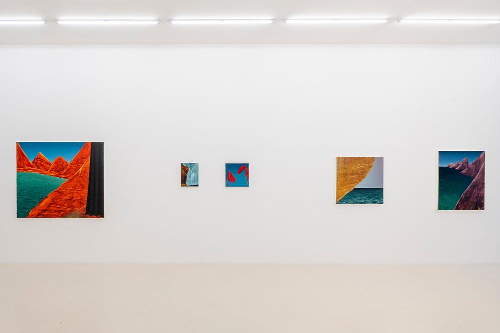 Schierke Seinecke, Ausstellungsansicht mit Gemälden von David Borgmann