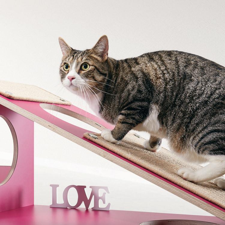 pawsonwood Katzenmöbel zum Klettern und Kratzen