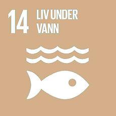 Linbakst FNs mål 14