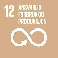 Linbakst FNs mål 12