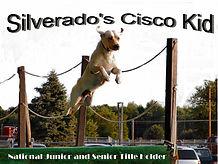 Cisco_at_Millersburg.jpg