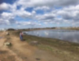 Cyclist a Sturt Pond