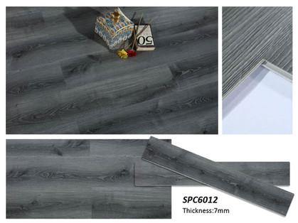 SPC 6012