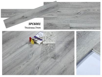 SPC 6001