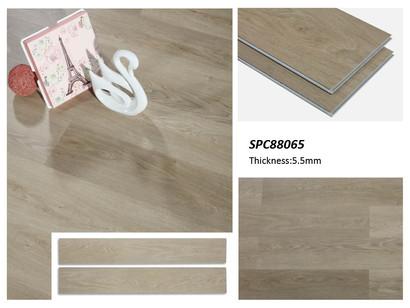 SPC 88065