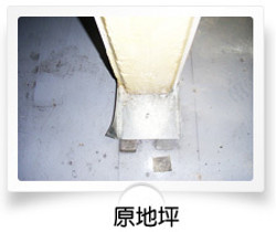 Original Platform