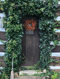 Door at Blue Moon Studio