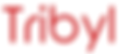 Tribyl logo_edited.png