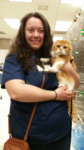 me at work with one of my previous kittens