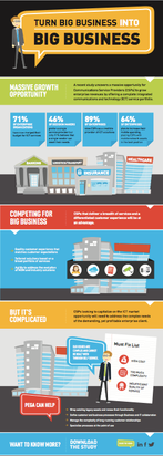 Big Business Infographic