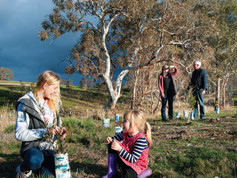 Landcare-in-Focus-July-2019-1.jpg