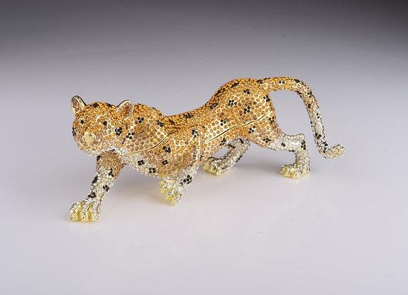 Brown Lioness, cheetah