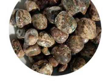 1 lb Jasper, Green Leopard Skin tumbled stones
