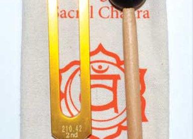 """8 1/2"""" Sacral (orange) tuning fork"""